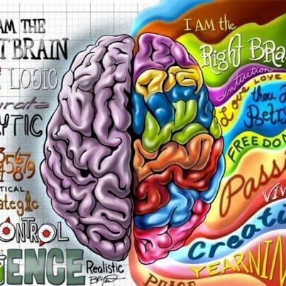 Моят мозък и двете ми полукълба