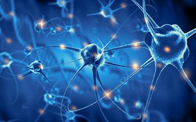 Неврони и Неврографика